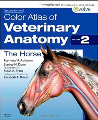 Textbook of Veterinary Anatomy 4th Edition