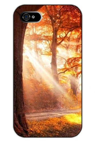 Sprawl Iphone 5 5S Case Protective Snap On Hard Plastic Unique Vintage Clear Design Golden Sunlight Through Trees