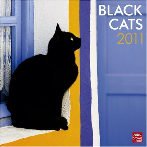 Black Cats 2011 Square 12X12 Wall Calendar (Multilingual Edition)