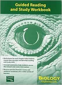 prentice hall biology textbook   eBay