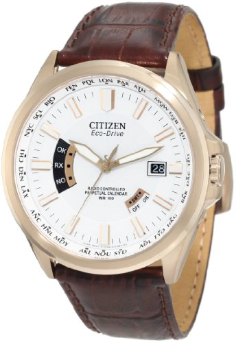 Citizen Mens CB0013-04A World Perpetual A-T Watch