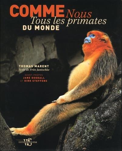 Comme nous - Tous les primates du monde francais