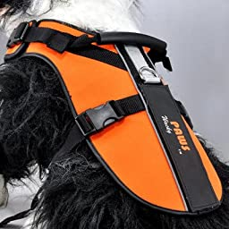 Wacky Paws Pet Sport Travel Harness, Large, Orange