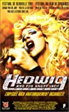 echange, troc Hedwig and The Angry Inch [VHS]