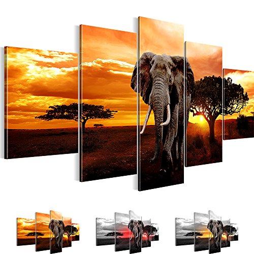 Bilder !!! Sensationspreis !!! TOP Vlies Leinwand Wand Bild African Sunset Kunstdrucke Wandbild ! 3 Farben zur Auswahl ! Fertig Aufgespannt !!! 100% MADE IN GERMANY !!! 100 x 50 cm 001252a Picture