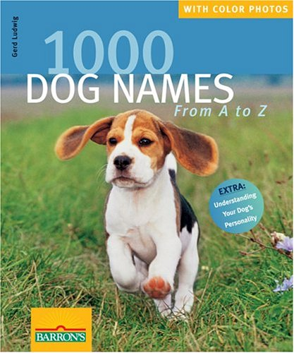 1000 Dog Names From A ...