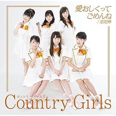 愛おしくってごめんね/恋泥棒(初回生産限定盤A)(DVD付)