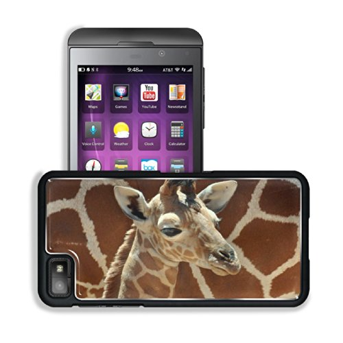 Giraffe Small Calf Face Pattern Cute Baby Africa Wildlife Animal Blackberry Z10 Snap Cover Premium Aluminium Design Back Plate Case Customized Made To Order Support Ready 5 3/16 Inch (131Mm) X 2 5/8 Inch (67Mm) X 4/8 Inch (13Mm) Luxlady Blackberry Z 10 Pr front-1050425