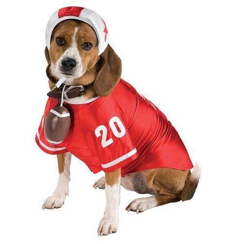 Football Player Pet Halloween Costume, Medium