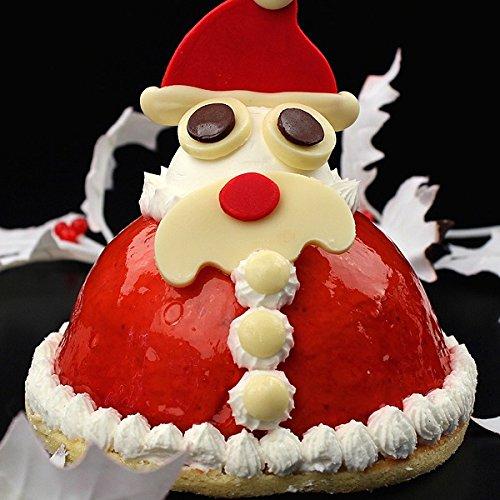 クリスマスケーキ 立体ケーキ「サンタクロースのストロベリーケーキ」 オーガニックサイバーストア