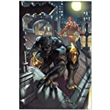 Black Panther: The Man Without Fear Volume 1: Urban Junglepar David Liss