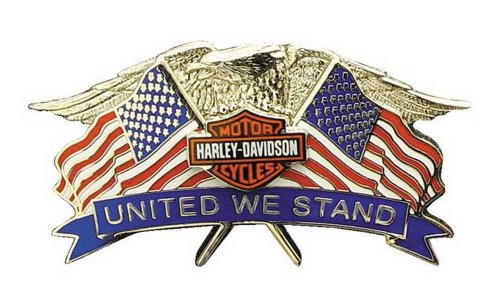 Harley-Davidson United We Stand Eagle Pin 2'' W X 1 1/8'' H P137843