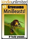 25 Gruesome MiniBeasts! Amazing facts, photos and video links to some of the most grisly creatures on the planet! (25 Amazing Animals Series Book 15) (English Edition)
