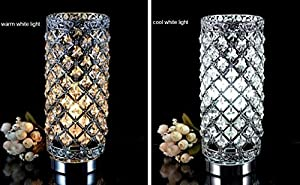 MC-29021 Crystal Silver Table Lamp from Surpass Lighting