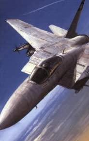 F-15C Eagle Units in Combat (Combat Aircraft)