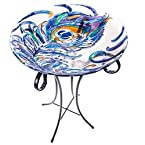 Glass Birdbath with Stand