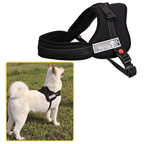 Ecoastal Dog Body Harness Padded Extra Chest Straps Heavy Duty with Handle Comfortable for Samoyed, Husky Large Dogs (Simply Dog Body Harness compare prices)
