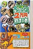 おこづかいで虫の世界を旅すると2万円貯まる本