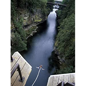 Bungee Jumping, Vancouver Island, British Columbia, Canada Stretched Canvas Poster Print, 18x24