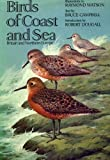 Birds of Coast and Sea: Britain and Northern Europe (0192176617) by Campbell, Bruce