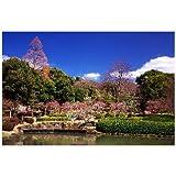 奈良県 奈良市奈良公園のポストカード葉書はがき Photo by絶景.com