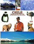 Chile, Feuer & Eis - Teil 3: Von Puer...