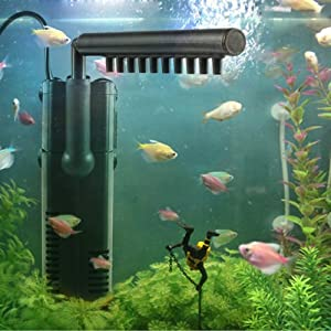 Filter in fish tank
