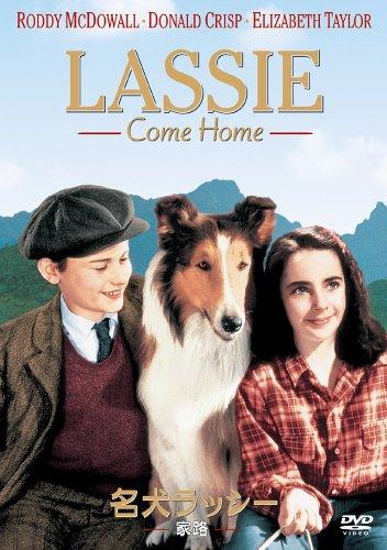 名犬ラッシー/家路 [DVD]