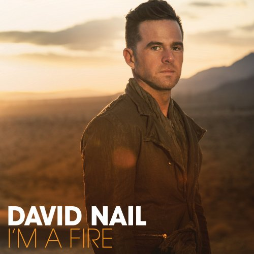 David Nail-Im A Fire-2014-MTD Download