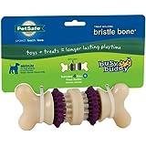 PetSafe Busy Buddy Bristle Bone Dog Toy, Medium