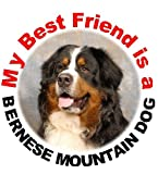 2 Bernese Mountain Dog Car Stickers My Best Friend
