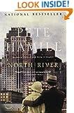 North River: A Novel