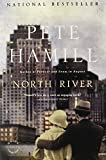 North River: A Novel (0316007994) by Hamill, Pete