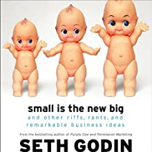 Small is the New Big: And 193 Other Riffs, Rants, and Remarkable Business Ideas Audiobook by Seth Godin Narrated by Seth Godin