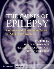 The Causes of Epilepsy (Cambridge Medicine)