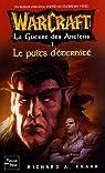 Warcraft : La Guerre des Anciens, Tome 1 : Le Puits d'Eternit�