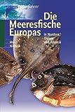 Die Meeresfische Europas. Kosmos-Naturführer (3440078043) by Bent J. Muus
