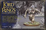 51Z7UwbaGyL. SL160  The Lord of the Rings Strategy Battle Game Mordor Troll/Isengard Troll