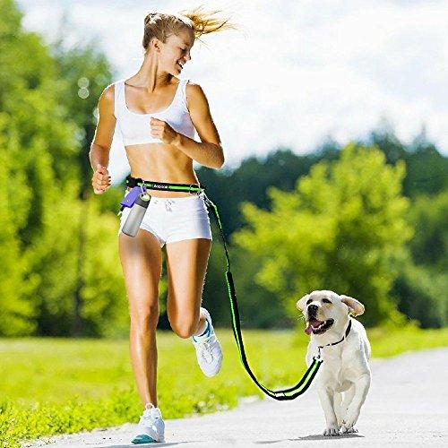 Aodoor-Hunde-frei-Leine-Freisprech-Hund-Leine-Jogging-Leine-Nylon-Hunde-frei-Hundeleine-Grn