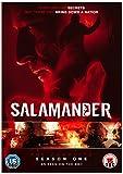 Salamander: The Complete Season One [DVD]