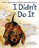 img - for I Didn't Do It book / textbook / text book