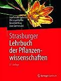 Image de Strasburger - Lehrbuch der Pflanzenwissenschaften