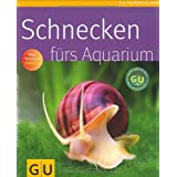 """Schnecken f�rs Aquariumvon """"Alexandra Behrendt"""""""