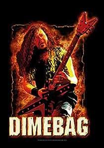 Dimebag Darrel - Fire Pantera - Posterflagge 100% Polyester - Grösse 75x110 cm