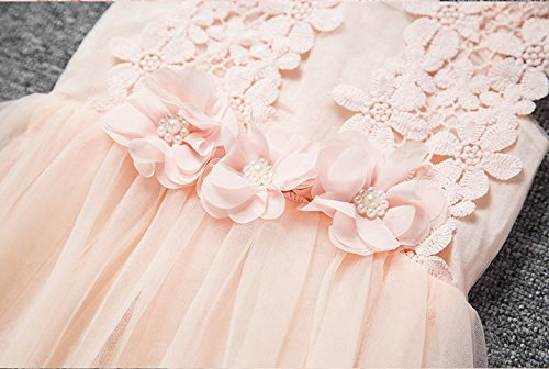 Baby Girls Sleeveless Lace Wedding Vintage Birthday Party Princess Flower Dress 3