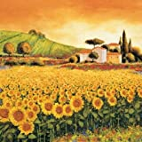 Valley of Sunflowers by Leblanc, Richard - Fine Art Print on PAPER : 14 x 14 Inches
