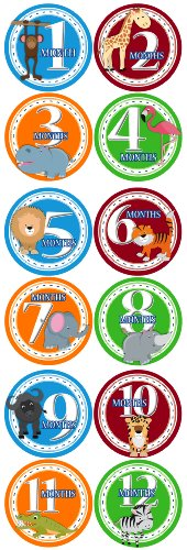 BOY SAFARI ANIMALS 1-12 Month Baby Monthly One Piece Stickers Baby Shower Gift Photo Shower Stickers