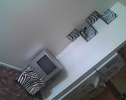 Zebra Corner Wall Shelf