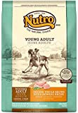 The Nutro Company Young Adult Dry Dog Food, 15-Pound