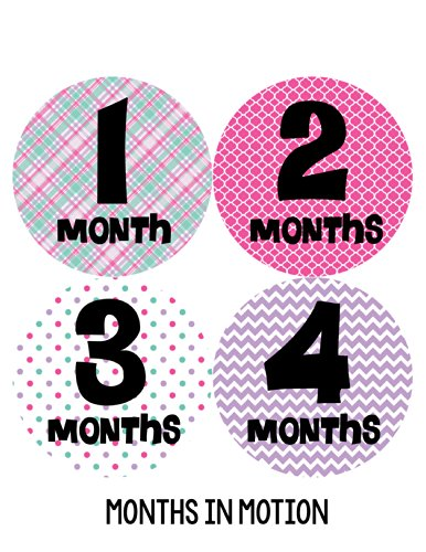 Months in Motion 204 Monthly Baby Stickers Baby Girl Months 1-12 Milestone Sticker